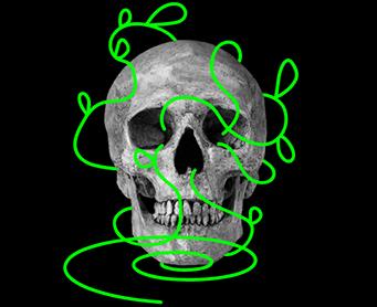 Skull_Poster-400-144#2